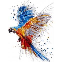Peinture à numéros - Perroquet